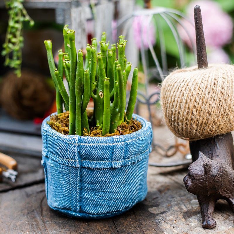 Blue Jeans Cement Flower Pot