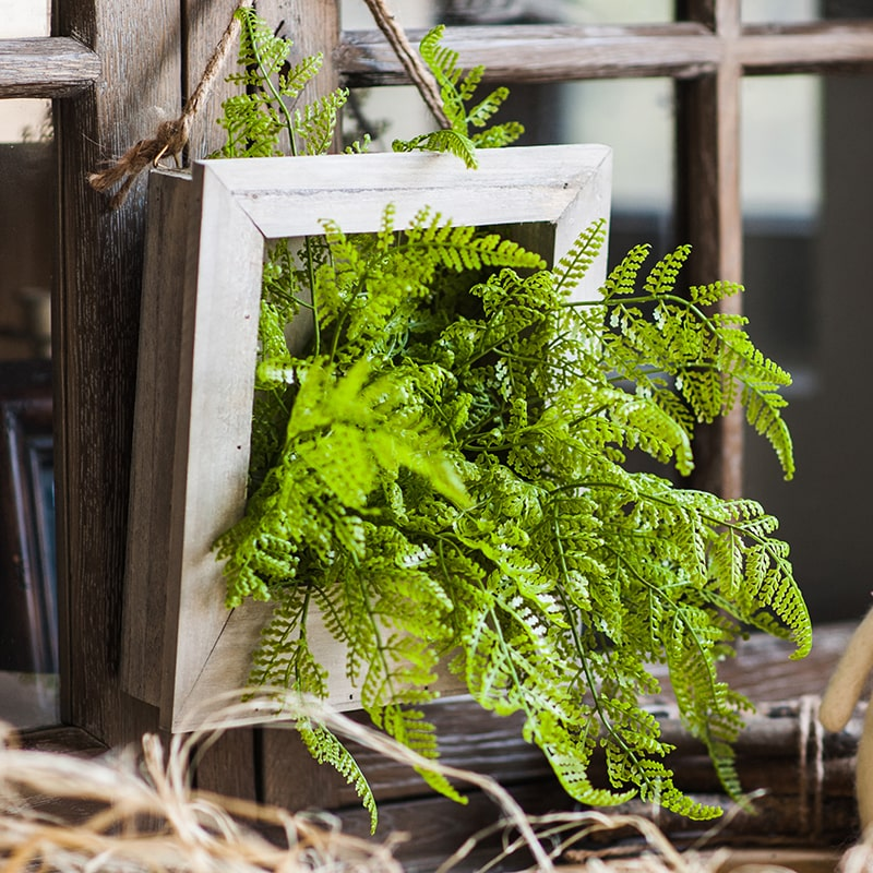 Green Plant Oba Fern in Wood Frame Plant Wall Art