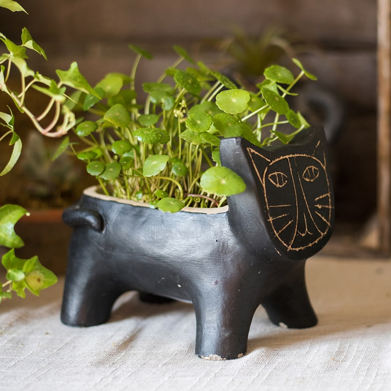 Cat Shape Small Planter in Concrete