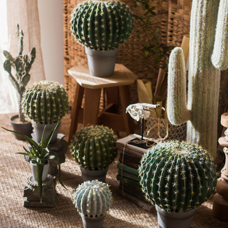 Artificial Potted Cactus Ball