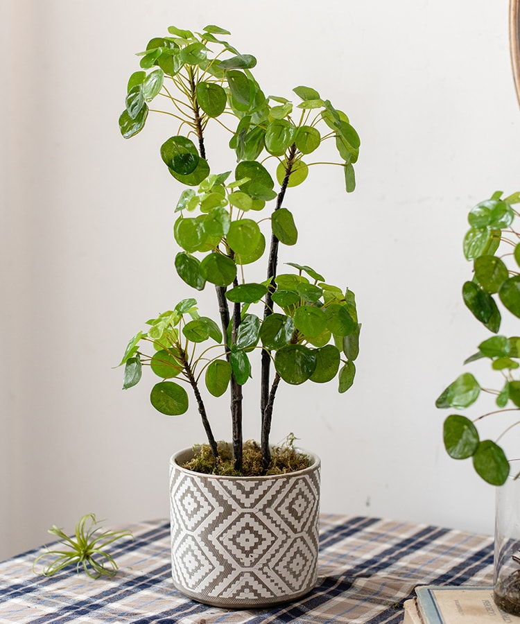 "Artificial Potted Pilea Plant 26"" Tall"