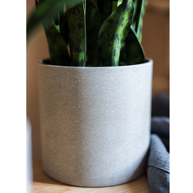 Potted Artificial Snake Plant Black Green Leaf