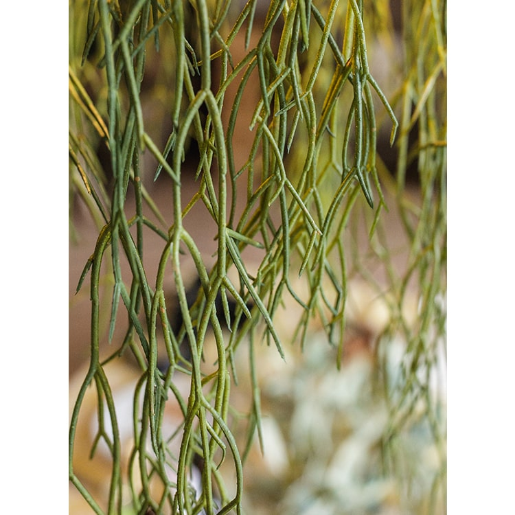 "Artificial Usnea Vine Stem 22"" Long"