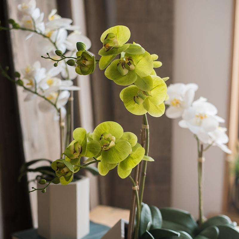 Artificial Flower Real Touch Orchid Plant in Green and White RusticReach