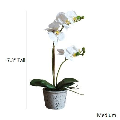 Artificial Flower White Orchid Potted Plant in Various Size RusticReach
