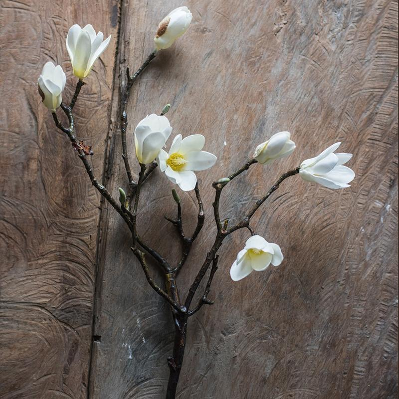 "Artificial Magnolia Stem in Eco PE Foam 25"" Tall RusticReach"