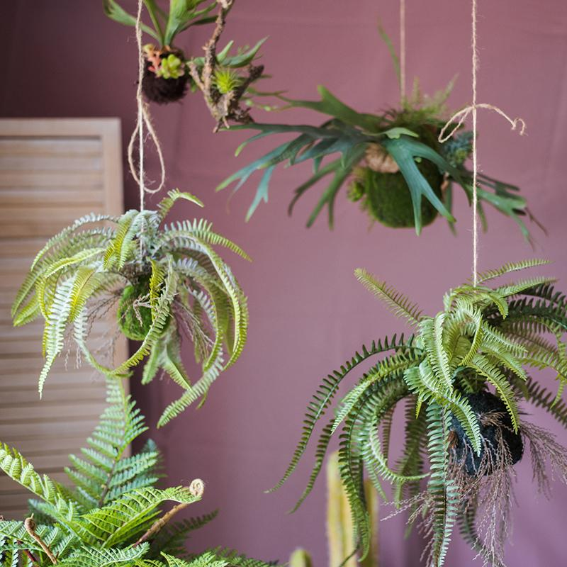 Artificial Plant Hanging Fern Plant Décoration RusticReach
