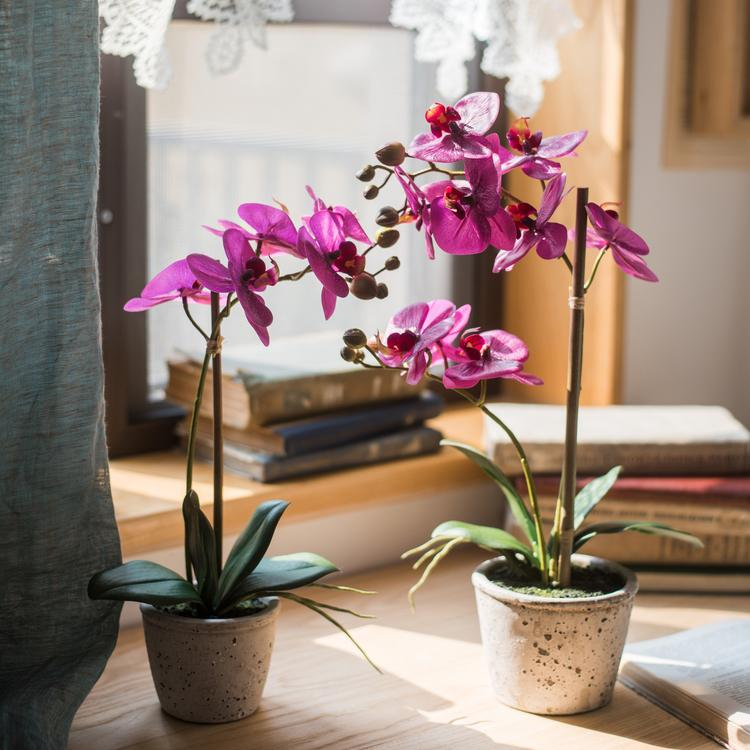 Artificial Purple Orchid Potted Plant in Various Size RusticReach