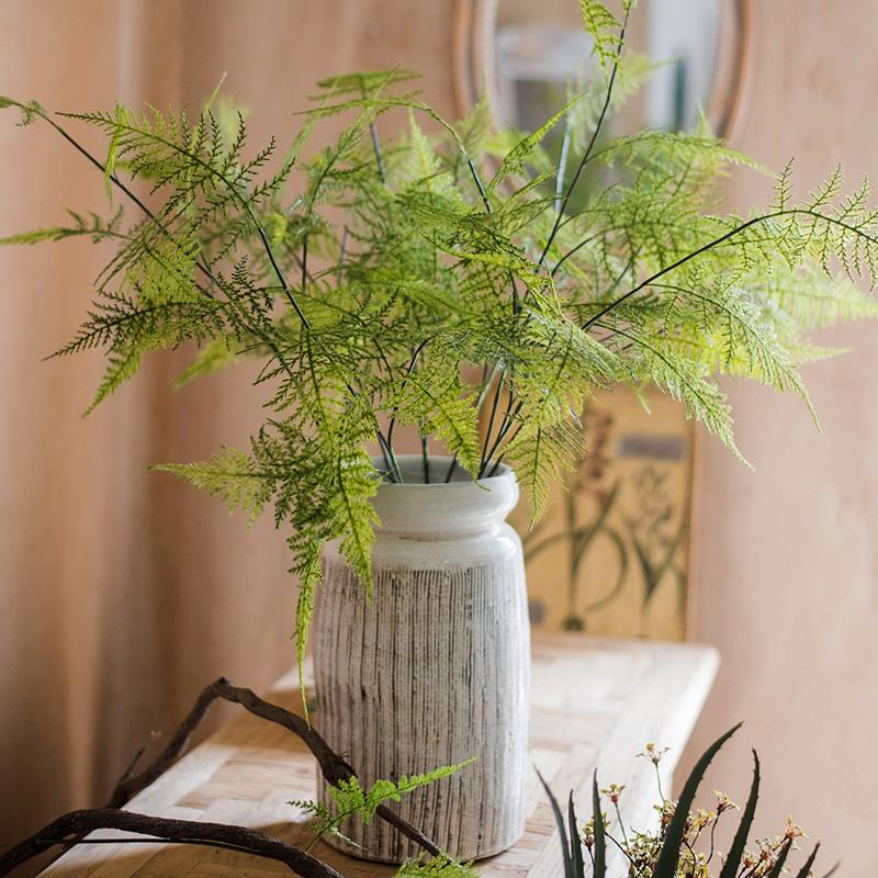 "Asparagus Fern Plant Stem 32"" Tall RusticReach"