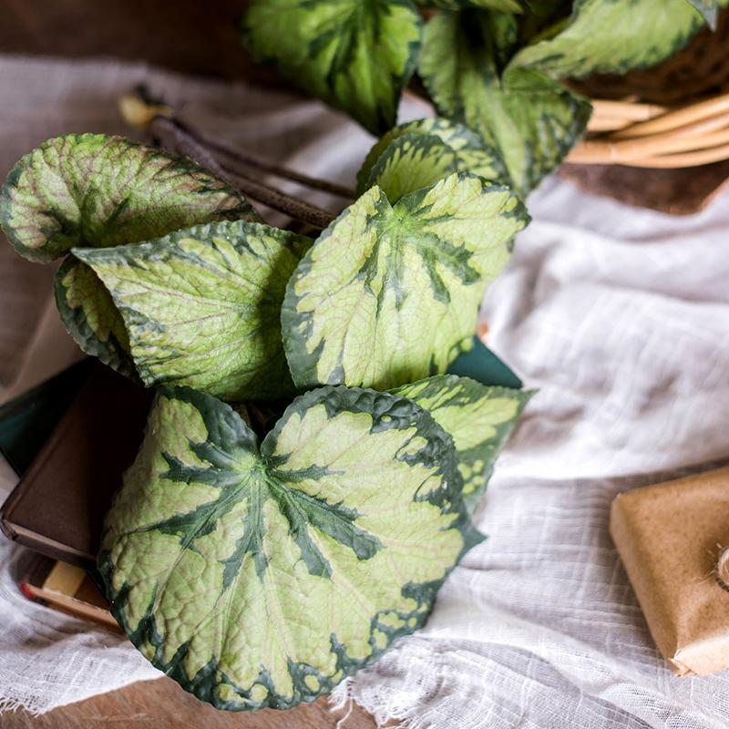 Begonia Leaf in Iron Pot Set RusticReach