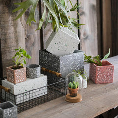 Cement Planter in Various Shape Colors and Sizes