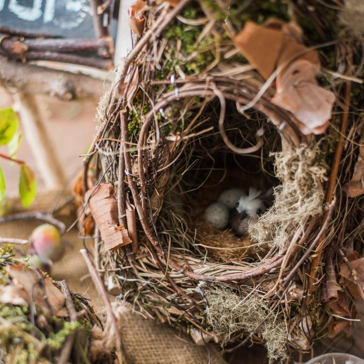 Decorative Natural Bird's Nest RusticReach
