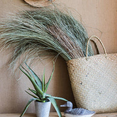 Dried Grass Bundle