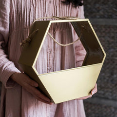 Gold Metal Planter Hexagon Hanging Planter