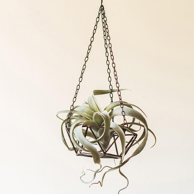 Metal Hanging Planter Geo Shape RusticReach
