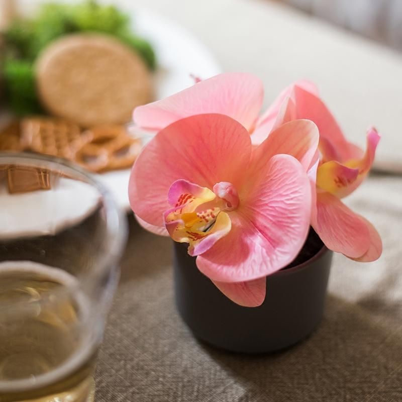 Potted Flower Mini Real Touch Potted Orchid in Peach Pink RusticReach
