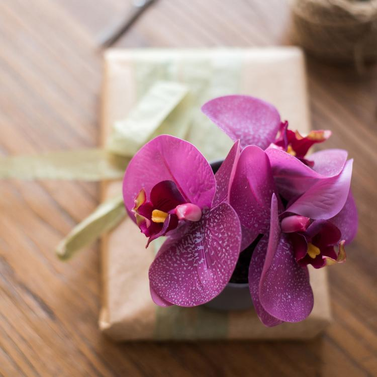 Potted Flower Mini Real Touch Potted Orchid in Purple RusticReach