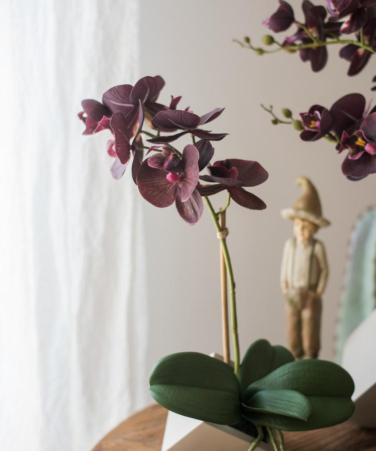 Potted Orchid Arrangement Purple Orchid RusticReach