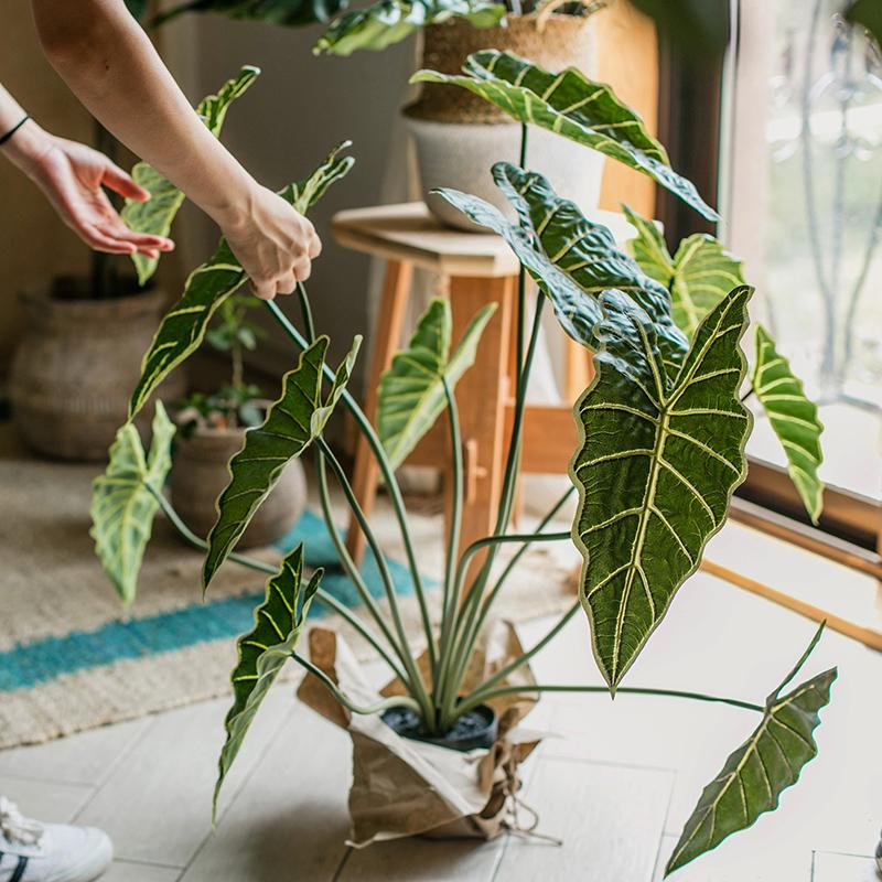 "Potted Plant Artificial Alocasia Plant 31"" Tall RusticReach"