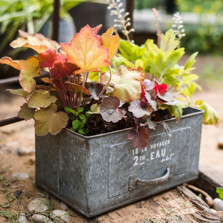 Rectangular Iron Planter Drawer RusticReach