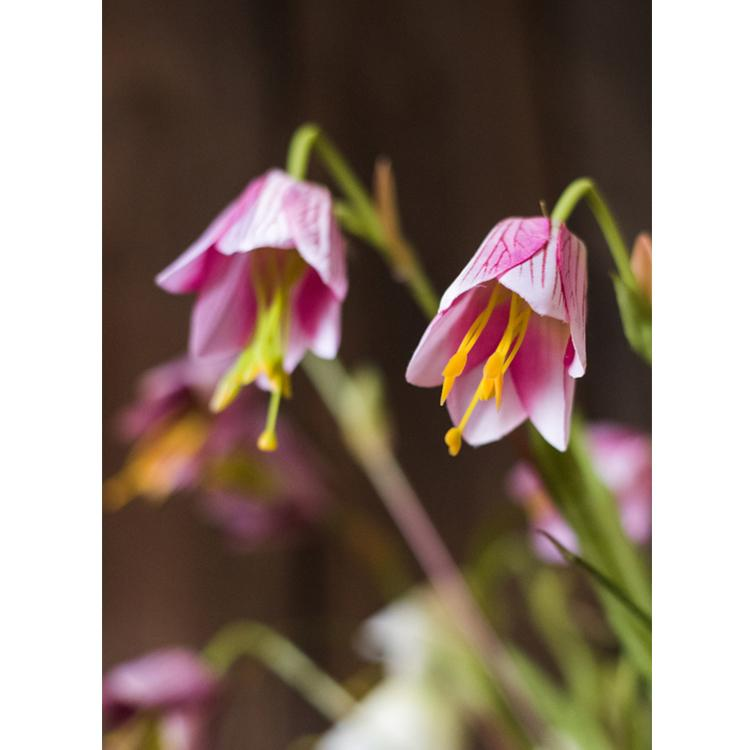 "Silk Fritillaries Lily Flower Stem in Pink or Purple 26"" Tall RusticReach"