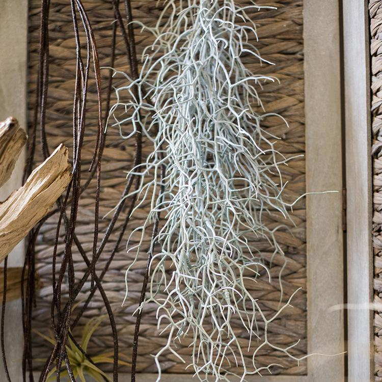 "Silver Gray Tillandsia Vine Stem 24"" Long RusticReach"