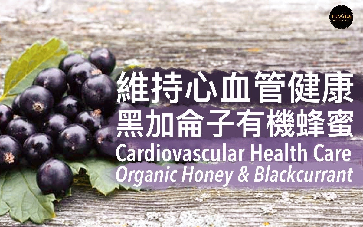 Maintenance of Cardiovascular Health|Organic Honey & Blackcurrant | Hexapi Organic Honey