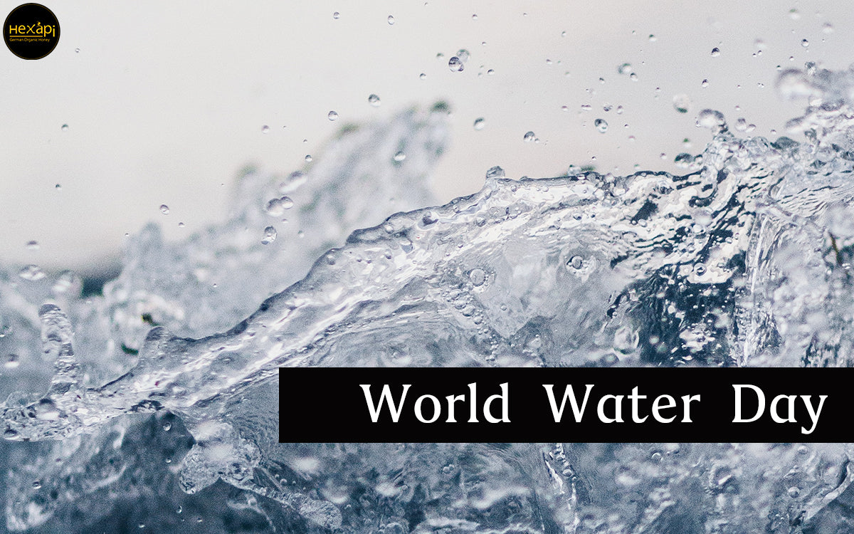 Hexapi Supports World Water Day