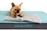 Pawpedics Orthopedic Dog Bed