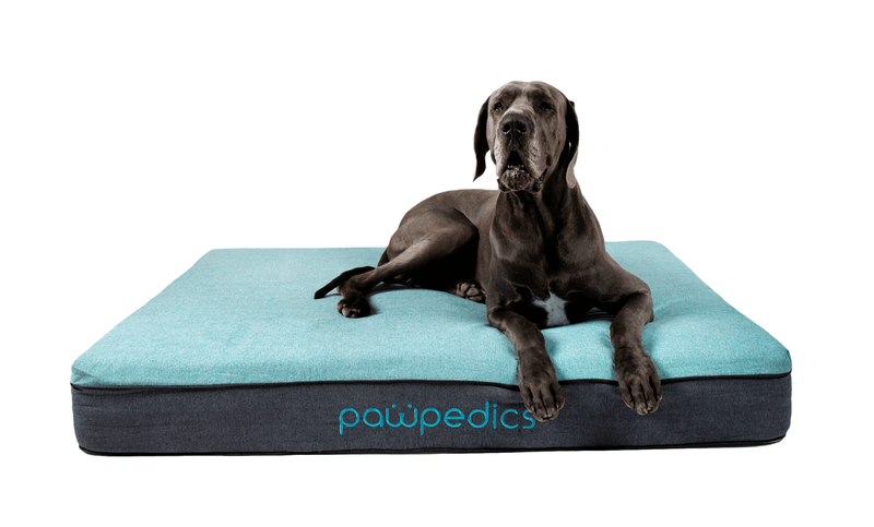 X-Large Orthopaedic Dog Bed