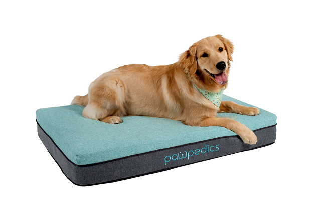Medium Orthopaedic Dog Bed