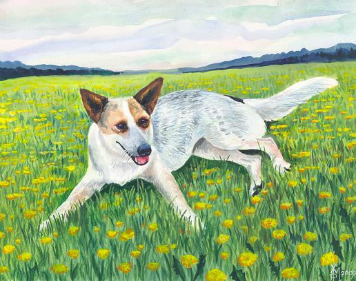 Australian Cattle Dog on Meadow, by Michail Halin
