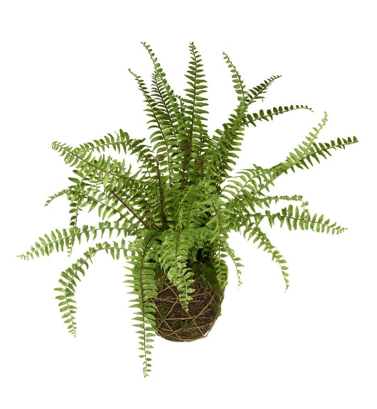 Artificial Bound Fern House Plant In Holder
