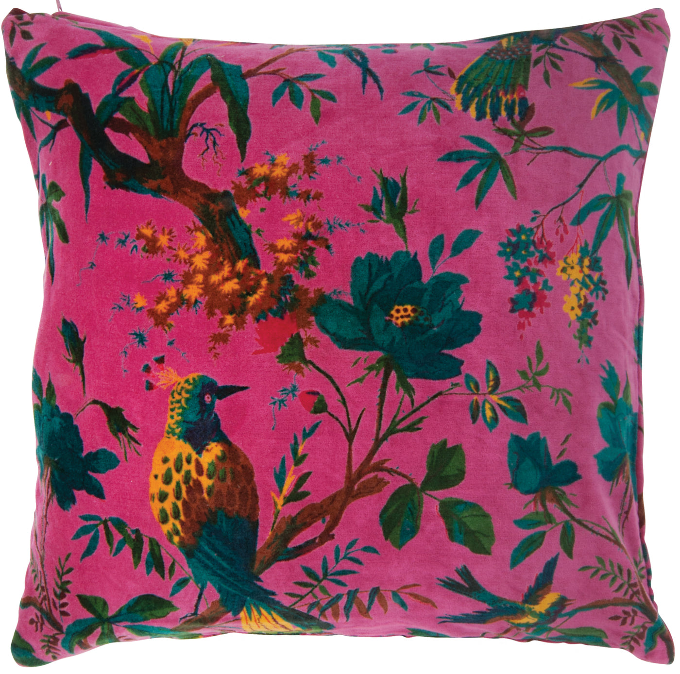 Cerise Bird Of Paradise Cotton Velvet Cushion