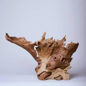 Wild Boar Natural Wood Sculpture - The Emperor's Lane