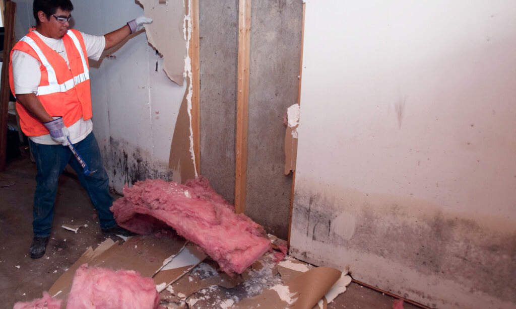 Cleaning Mold on Walls & Ceilings