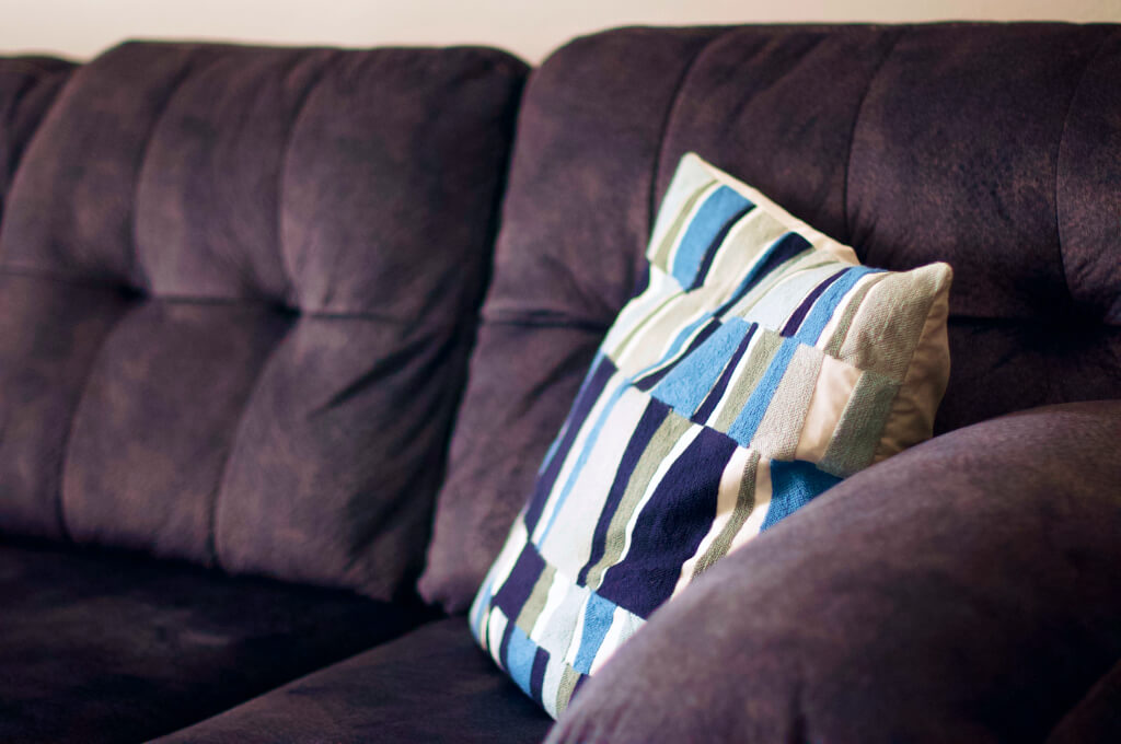 Cleaning Mold on Upholstery