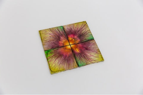 Springtime coasters (set of 4)