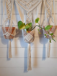 Macrame 3 Planter Wall Hanging