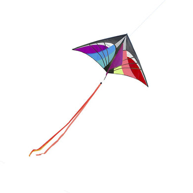 160 x 90cm / 63 x 35.5in Large Delta Kite Outdoor Sport Single Line Flying Kite with Tail for Kids/ Adults
