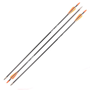 6pcs Archery Arrow