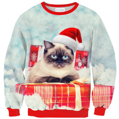 Christmas Cat Sweater Shelfies