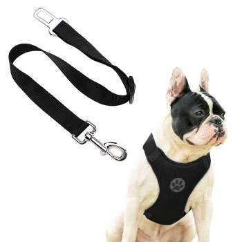 Seat Belt Leash