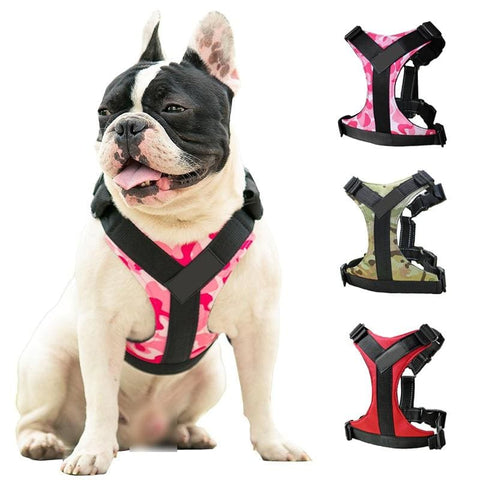 Adjustable, Reflective Harness (Comfortably Fits Frenchie Bodies!) - Wrinkles & Cupcakes