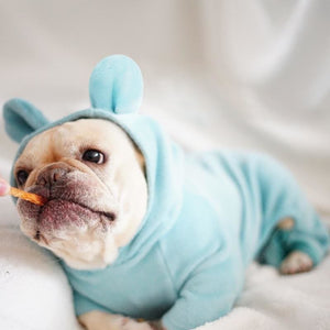 Cute Ear Frenchie Pajamas - Wrinkles & Cupcakes