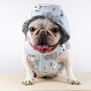 French Bulldog Winter Coat
