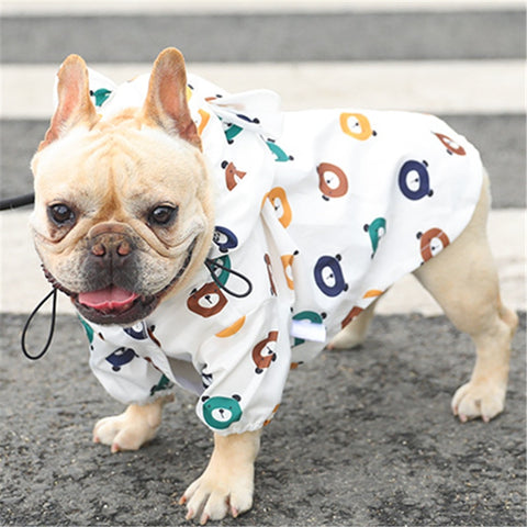 French Bulldog Rain Jacket