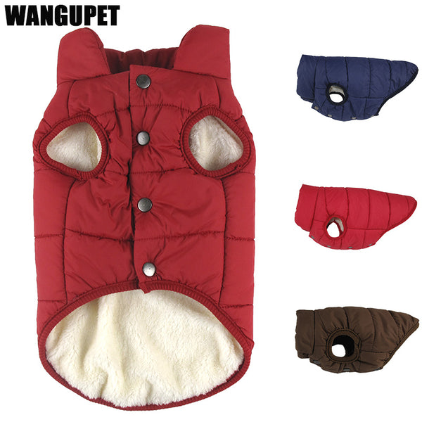 French Bulldog Winter Coat - Wrinkles & Cupcakes