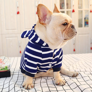 Stripe Spring French Bulldog Cotton Hoodie