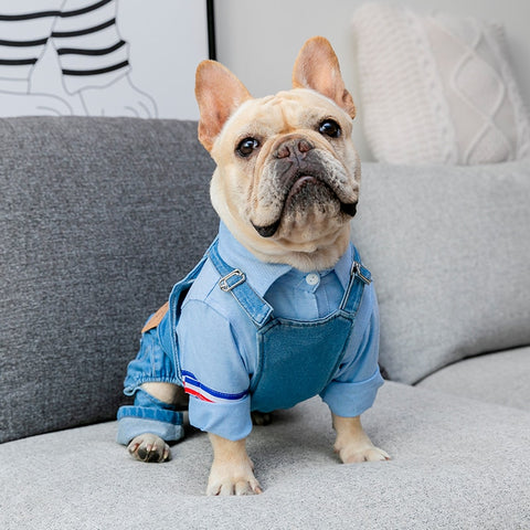 Denim Frenchie Overall